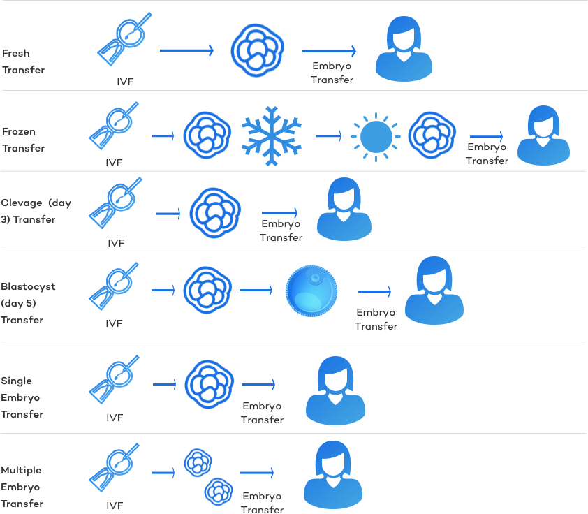 types-of-embryo-transfers